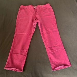 Sonoma Life + Style deep red slacks size 22W